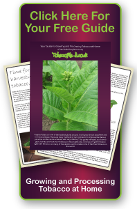 Your Free Guide to Growing and Processing Tobacco at Home.